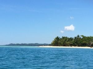 L'île aux nattes, vue de loin