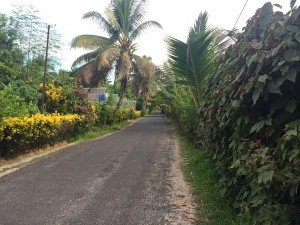Route principale de Sainte-Marie