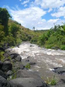 La rivière Lilly, juste devant la chute