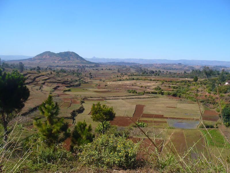 Des rizières à Antsirabe