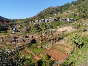 Deuxieme village Zafimaniry