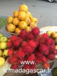 Bouquets de litchis chinois