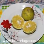 Les oranges de Madagascar